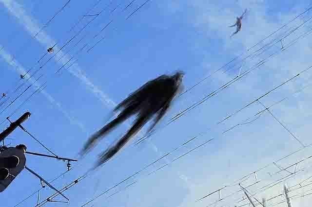 467378585 Может ли человек летать? Полеты без крыльев Блог писателя Сергея Синенко Люди, факты, мнения