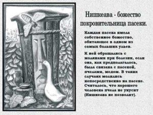 Культура народов Башкортостана