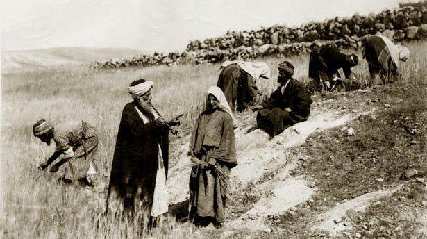 holy_lbb Материальное положение мусульманского духовенства Ислам