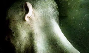 2452522626 ГМО в условиях погреба и опасность выхода на историческую арену Бамбуччо-Бо Блог писателя Сергея Синенко Люди, факты, мнения Новая Мифляндия