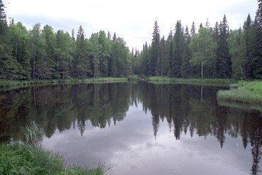 yuryuzan-prudki Рыболовство у башкир Народознание и этнография