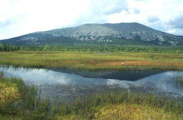 kaban-v-bolote Село Верхние Киги на северо-востоке Башкирии Башкирия Посреди РУ