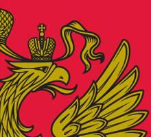 0008 Как защитить государственные символы России от «местных дизайнеров»? Башкирия Блог писателя Сергея Синенко