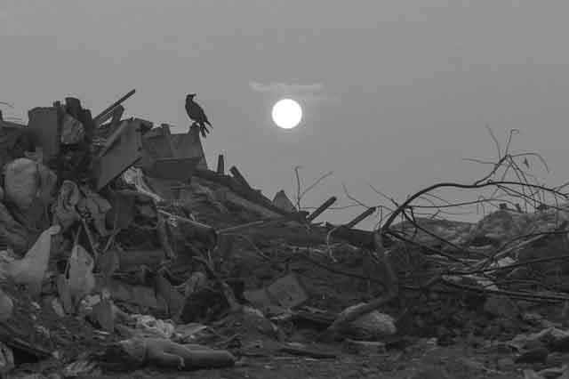 5453457 Тарифы на мусор в Чувашии выросли в 16 раз Анализ - прогноз Чувашия