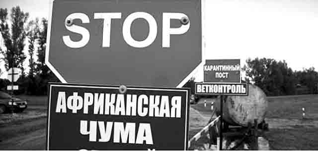 _татарстан Чума в Татарстане Люди, факты, мнения Татарстан