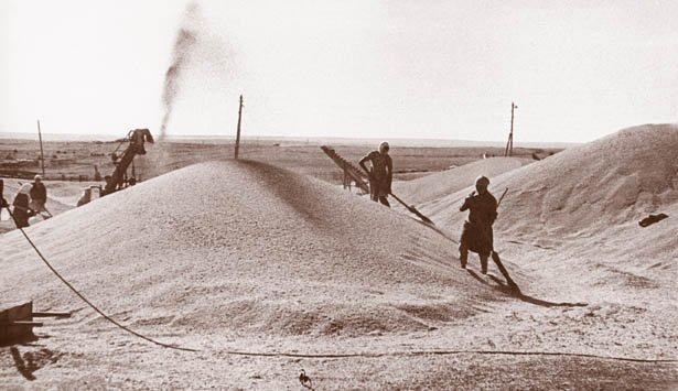02-96 Женщины кормят страну... Блог Сергея Синенко Защита Отечества История и краеведение