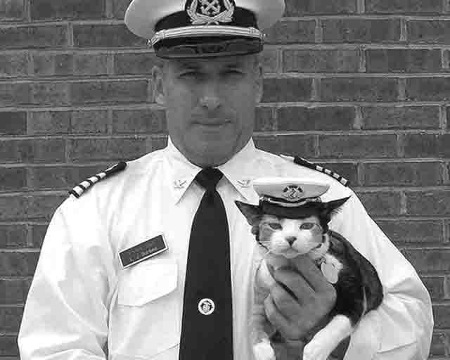 3637347 Животные на корабле Защита Отечества