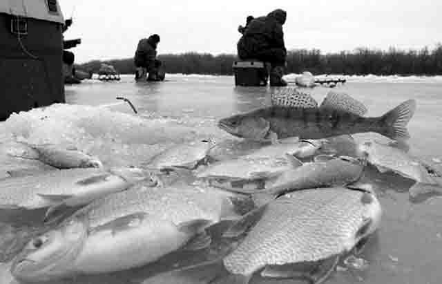 rybalka-na-vodohranilische Зимняя рыбалка на Павловке (Башкирия) Башкирия Люди, факты, мнения