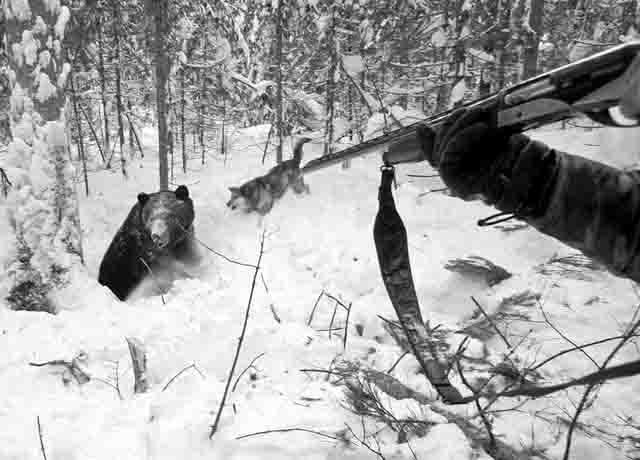 37357 Охота на медведя в Башкирии Башкирия Люди, факты, мнения