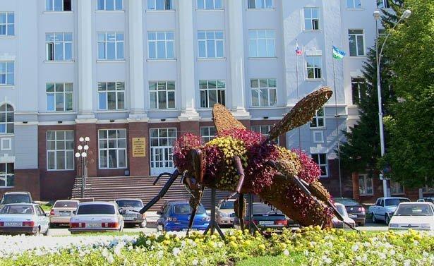 SH103398_2 Пчеловодство в Башкирии Башкирия Народознание и этнография