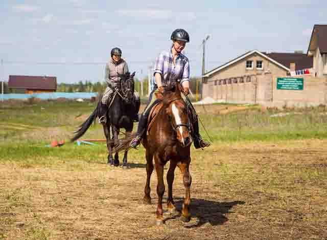 6 Конный клуб в селе Старая Бинарадка Самарской области Посреди РУ Самарская область