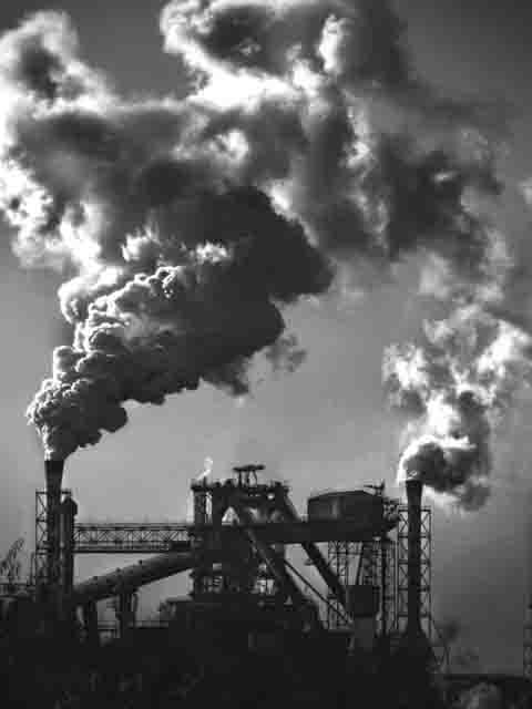 89867 Кому принадлежат предприятияОренбургской области? Анализ - прогноз Экономика и финансы