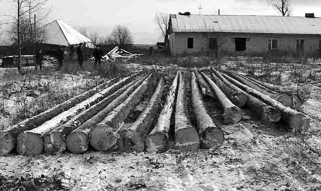 5454 Пихтари в Кунгурском районе Пермской области Пермский край Посреди РУ