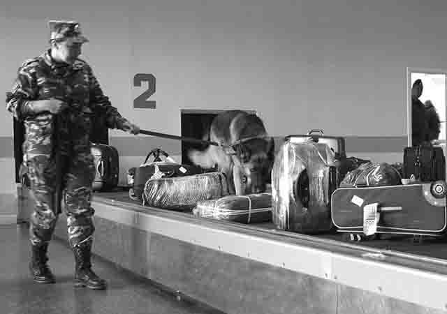 79866 Осужден житель Уфы, сообщивший о заложенной в аэропорту бомбе Антитеррор Башкирия