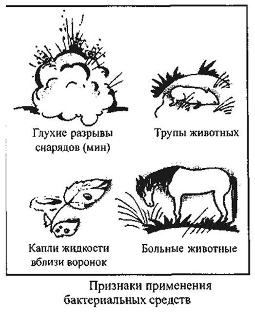 primenenie-biologicheskogo-oruzhija-3 Биотерроризм и биологическая безопасность Антитеррор